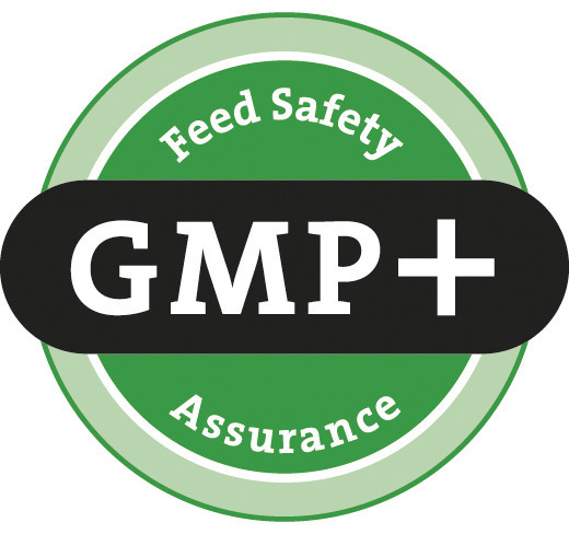 GMP + FSA